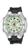 Часы Citizen AL0050-06W